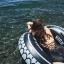 SM-V1-630 ชุดว่ายน้ำวันพีช สีดำ ด้านหลังเว้าเซ็กซี่ thumbnail 7
