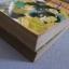 7 สี 7แสบ ชุด เล่ม 1,2 ( 3 เล่มจบ ) อาดาจิ มิซูรุ เขียน thumbnail 2