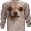 Chihuahua Face (LS) thumbnail 1