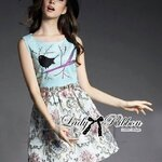 Lady Anna Dreamy Garden Embroidered Sleeveless Dress