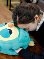 Preorder  Hugs owl cusion (นกฮูก Roumamg The Heirs)