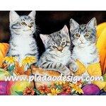 กระดาษสาพิมพ์ลาย สำหรับทำงาน เดคูพาจ Decoupage แนวภาำพ ลูกแมวน้อย 3 ตัว นั่งเล่นในกระถางไว้ปลูกต้นไม้ A5