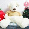 ตุ๊กตาหมี Teddy Bear ใส่เสื้อ size xxxl