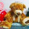 ตุ๊กตาหมีตัวใหญ่ ใส่หมวก size XXXL